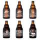 The Beer Buddies Mischkarton 6 Flaschen